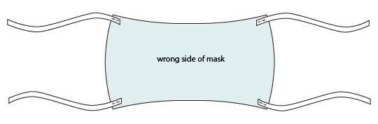Cat in a Mask Social Distancing Banner - step 8